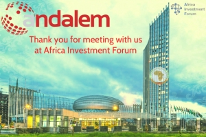 Andalem at Africa Investment Forum: Including the Private sector in Africa's economic transformation & sustainable development