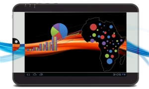 Information Technology Dynamics in Africa